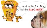 Pirmadienio anglų kalbos idioma | Big cheese